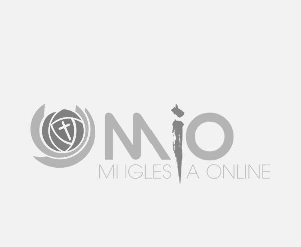 auspiciadores expofe MIO1bw